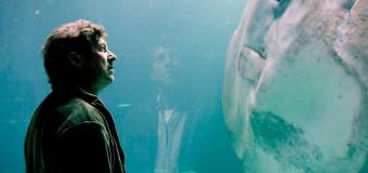 Filmanmeldelse: Klumpfisken – Sød musik mellem fiskekasser i befriende varm og ægte film