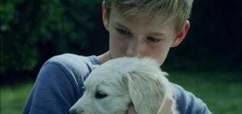 Berlinalen dag 10 – Fornem hæder til dansk kortfilm