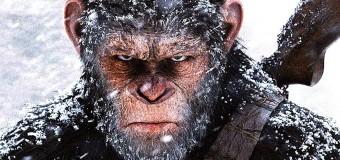Filmanmeldelse: Abernes Planet: Opgøret – Voldsom og visuelt vidunderlig abefilm