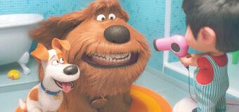Filmanmeldelse: Kæledyrenes hemmelige liv  2 – Sød 2'er, men handlingen roder