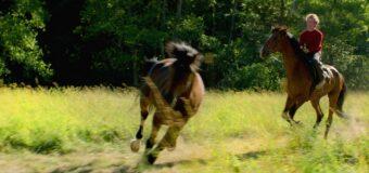 Filmanmeldelse: Ud og stjæle heste – Smukt norsk, coming of age drama