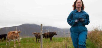 Filmanmeldelse: Mælkekrigen – Smuk og nuanceret islandsk fortælling